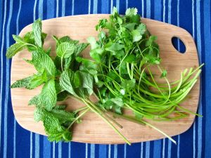 Cilantro and Mint for Chicken in Vindaloo Yogurt Sauce