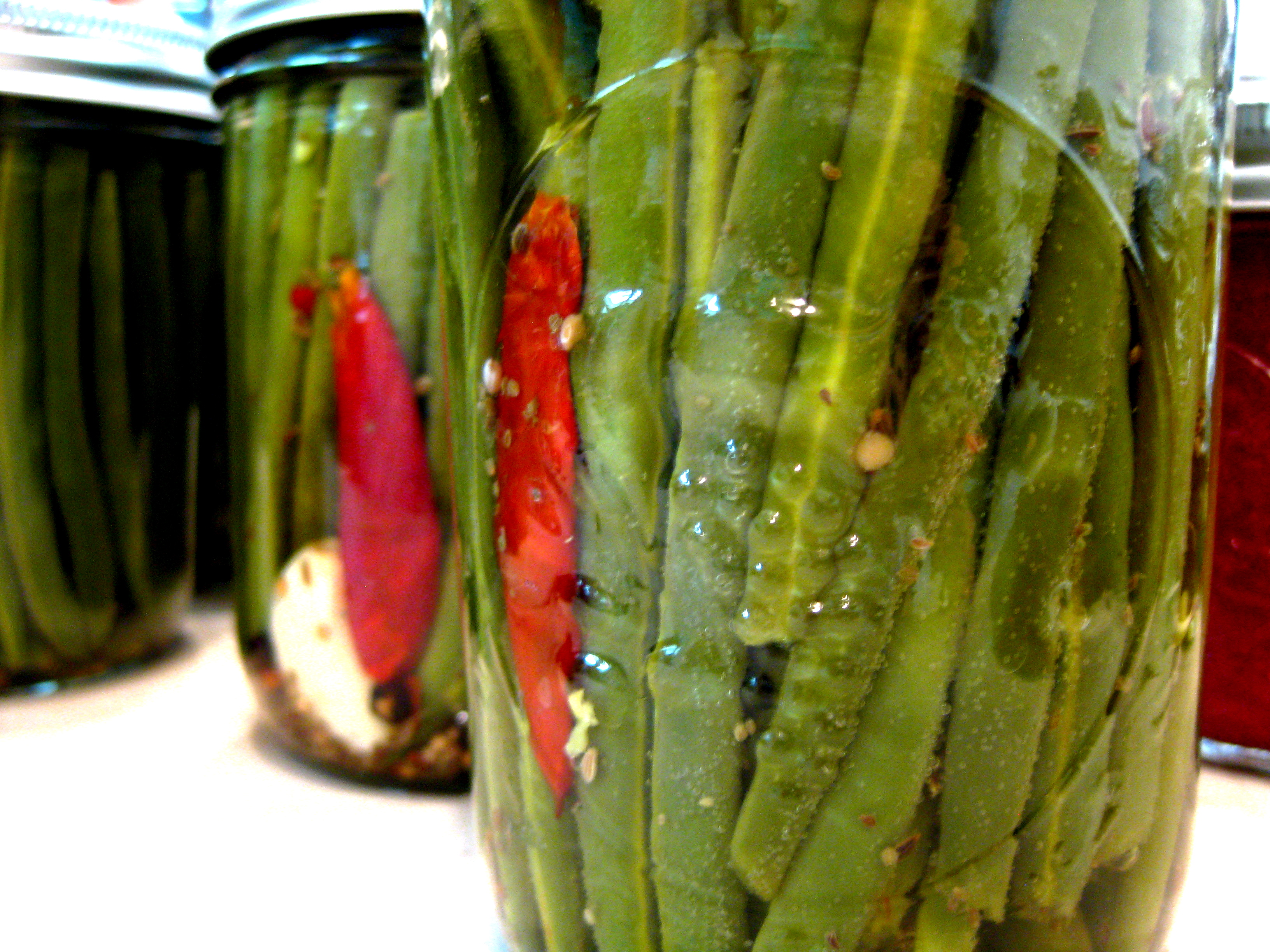 Canning 101: Pickled Green Beans | spontaneous tomato