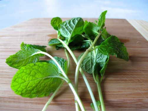 Fresh Mint for Chicken Tagine with Chickpeas, Chard, and Dried Figs