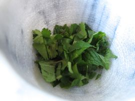 Mint and cilantro